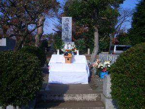 20101128_yukokukibozensai